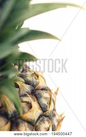 Pineapple, close-up