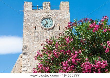 Oleander Tree And Medieval Clock Tower In Taormina