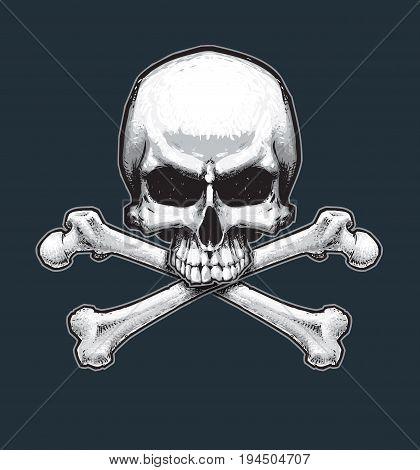 Pirates Jawless Skull And Bones