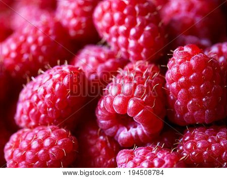 Raspberry fruit close up background. Super food with vitamins and antioxidants. Macro photo