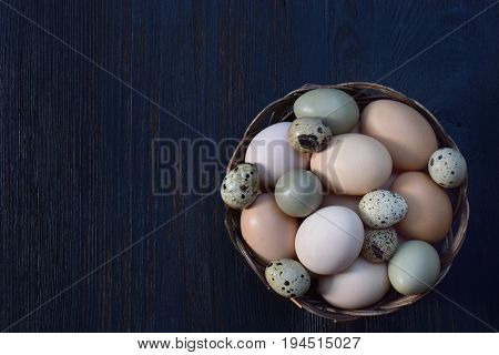 Set Of Different Types Birds Eggs From Chicken, Pheasant And Quail On A Dark Background.