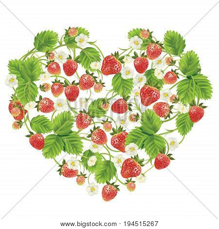 heart shaped floral element, decorated by forest strawberry, on white background. Vector realistic illustration for textile, t shirts, greetings card