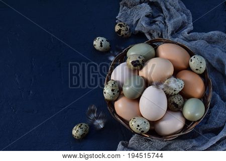 Set Of Different Types Birds Eggs From Chicken, Pheasant And Quail With Feathers On A Dark Backgroun