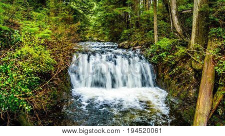 Upper Rolley Falls in the temperate rain forest of Rolley Lake Provincial Park near the town of Mission in British Columbia, Canada