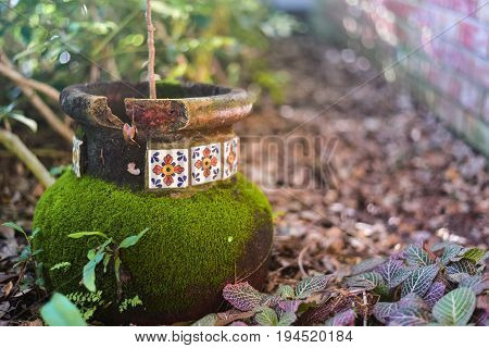 mossy rustic pottery in a shaded garden