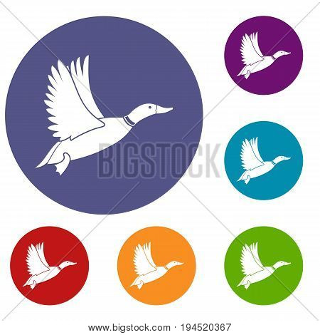 Duck icons set in flat circle reb, blue and green color for web