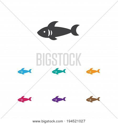 Vector Illustration Of Animal Symbol On Sea Predator Icon. Premium Quality Isolated Shark Element In Trendy Flat Style.