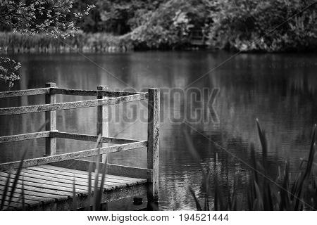 Shallow Depth Of Field Landscape Image Of Vibrant Peaceful Summer Lake In English Countryside In Bla