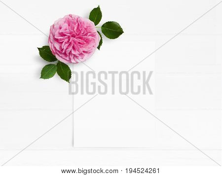 Styled stock photo. Feminine wedding desktop mockup with pink English rose flower and white empty paper card. Floral composition on old white wooden background, top view. Flat lay picture.