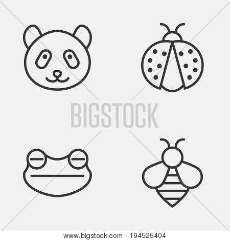 Zoology Icons Set. Collection Of Bear, Bumblebee, Toad And Other Elements. Also Includes Symbols Such As Bear, Amphibian, Insect.