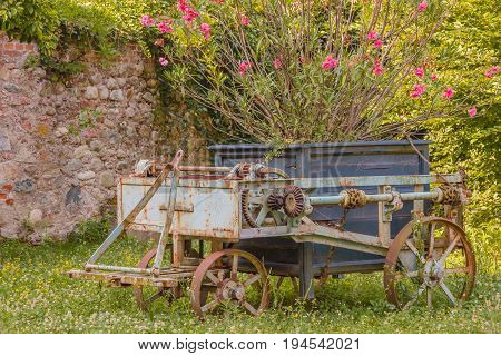 On a vintage agricultural chariot was laid a jar of pink colored flowers /an old rusty agricultural chariot was abandoned in a garden