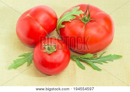 Three ripe red tomatoes different sizes and arugula leaves closeup on a sackcloth