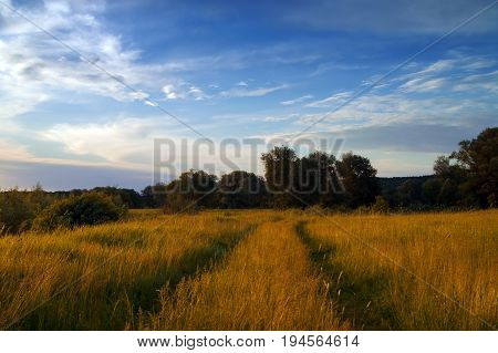 Road through meadow and sunlight sky with clouds at autumn evening