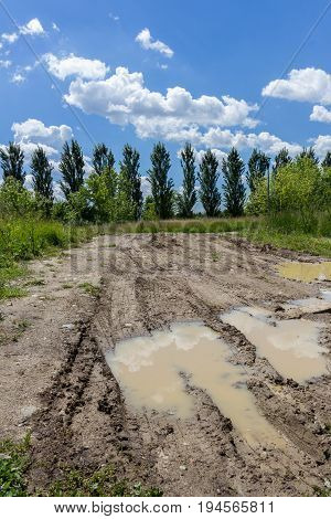 Muddy land with trees in background and blue sky with white clouds.