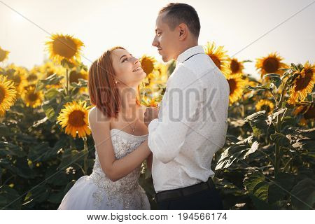 Bride In Wedding White Dresses And Groom In Whit Shirt And Tie Standing Hugging In The Field Of Sunf