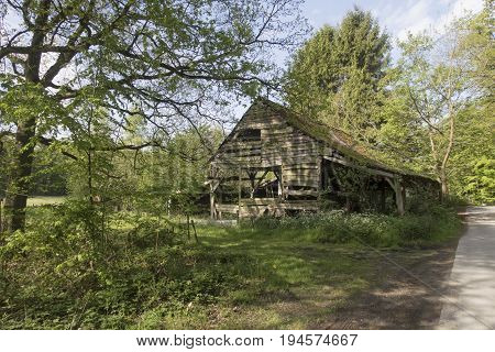 Old dilapidated wooden barn shed surrounded by trees