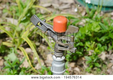 Sprinkler head for irrigation in horticultural setting