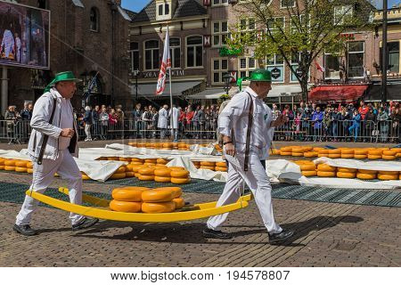 Alkmaar, Netherlands - April 28, 2017: Cheese carriers at traditional cheese market.