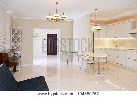 Modern kitchen area attached to the living room. Interior design with classic or vintage and modern elements