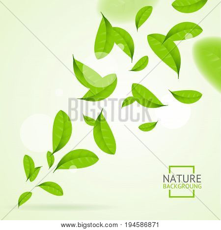 Realistic Fly Green Leaves Pattern Background Bright Nature Foliage Movement for Poster. Vector illustration