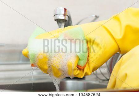 Cleaning Lady Holding Dishware Kitchen Sponge