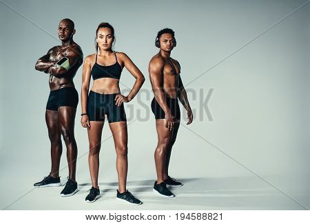 Full length portrait of healthy young men and woman with muscular build standing together over grey background. Group of muscular people looking at camera.