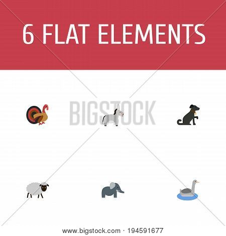 Flat Icons Mutton, Trunked Animal, Gobbler And Other Vector Elements. Set Of Animal Flat Icons Symbols Also Includes Neck, Turkey, Dog Objects.