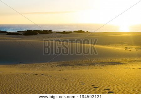 Slope hill sand on yellow dunes on blue sky background. Sunrise, morning. Sustainable ecosystem. Canary island, Fuerteventura
