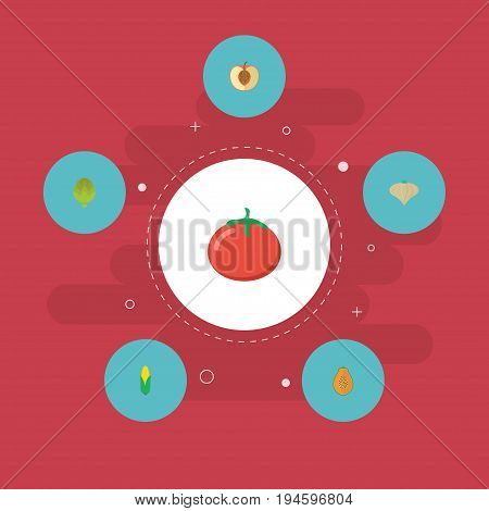 Flat Icons Maize, Herbaceous Plant, Pawpaw And Other Vector Elements. Set Of Fruit Flat Icons Symbols Also Includes Peach, Onion, Corn Objects.