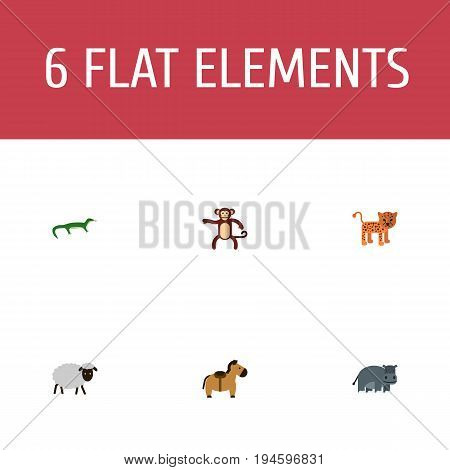 Flat Icons Pony, Panther, Reptile And Other Vector Elements. Set Of Zoology Flat Icons Symbols Also Includes Gecko, Pony, Animal Objects.