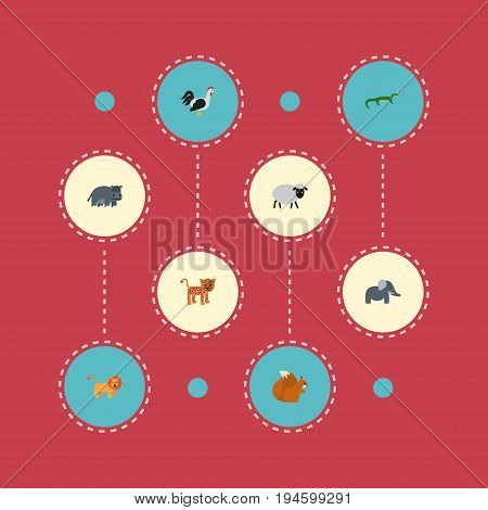 Flat Icons Mutton, Trunked Animal, Hippopotamus And Other Vector Elements. Set Of Zoo Flat Icons Symbols Also Includes Hippopotamus, Lion, Merinos Objects.