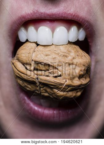 Close up of a mouth with healthy teeth that crack a nut
