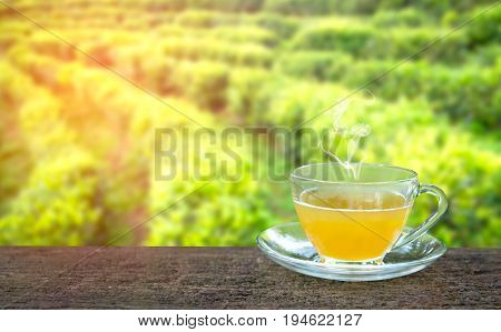 Cup of hot tea and tea leaf on the wooden table and the tea plantations background in sunrise morning
