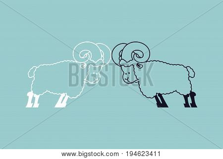 Sheep To Butt. Confrontation Beast. Competition Of Male Ram. Battle Farm Animals