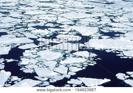 Antarctica, Weddell Sea, ice floe