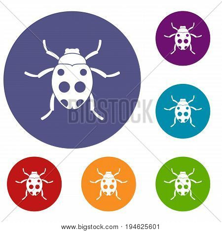 Ladybug icons set in flat circle reb, blue and green color for web