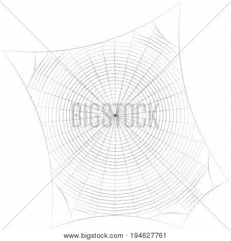 Spiderweb. Isolated on white background. Sketch illustration.