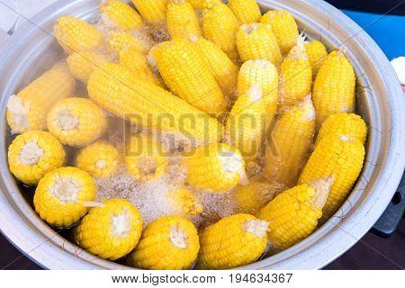Corn Cops Boiling In Hot Water