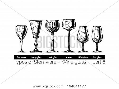 Types of wine glass. Sauternes sherry hock alsace madeiera and port glasses. illustration of stemwares in vintage engraved style. isolated on white background.