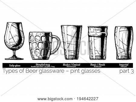 Types of Beer glassware pint glasses. Tulip dimpled conical nonic and imperial pints. illustration of stemwares in vintage engraved style. isolated on white background.