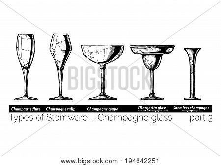 Types of champagne glass. Flute tulip coupe margarita and stemless glasses. illustration of stemwares in vintage engraved style. isolated on white background.