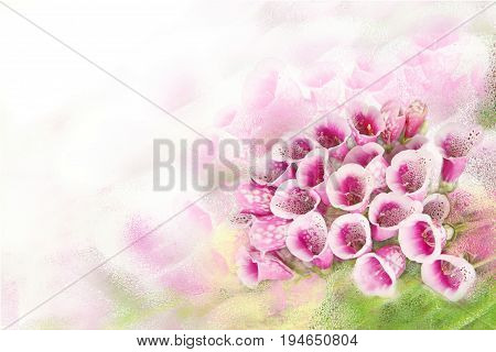 Romantic background with beautiful purple flowers Foxglove