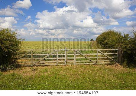 Wooden Field Gate