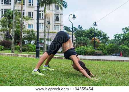 Fit young lady working out outdoors, doing stretching exercises and standing in downward facing dog yoga pose