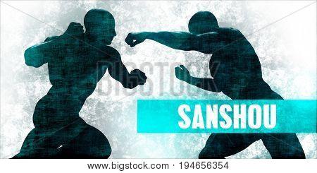 Sanshou Martial Arts Self Defence Training Concept 3D Render