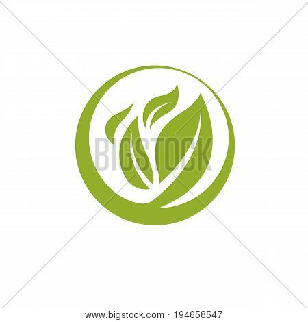 Green leaves isolated on white background. Healthy lifestyle conceptual icon for use in medical treatment organizations.