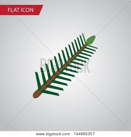 Isolated Rosemary Flat Icon. Spruce Leaves Vector Element Can Be Used For Rosemary, Spruce, Leaves Design Concept.