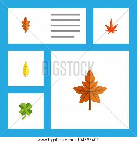 Flat Icon Maple Set Of Leafage, Alder, Linden And Other Vector Objects. Also Includes Leaf, Leafage, Foliage Elements.