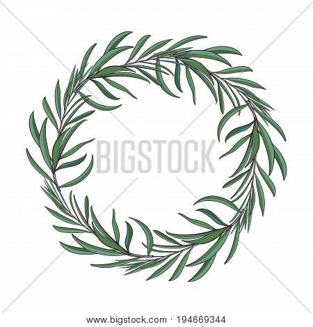 Wreath of hand drawn melaleuca twigs, branches, decoration element with place for text, sketch vector illustration isolated on white background.