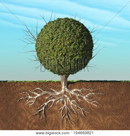 A tree with green leaves in the shape of sphere with roots underground. This is a 3d render illustration